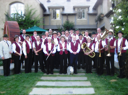 50 piece band, large band, band for hire, band on a budget,  how to choose my band, band for my wedding